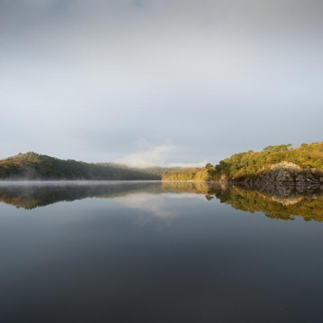 A l'aube sur le Lac de Guerledan en automne et dans la brume