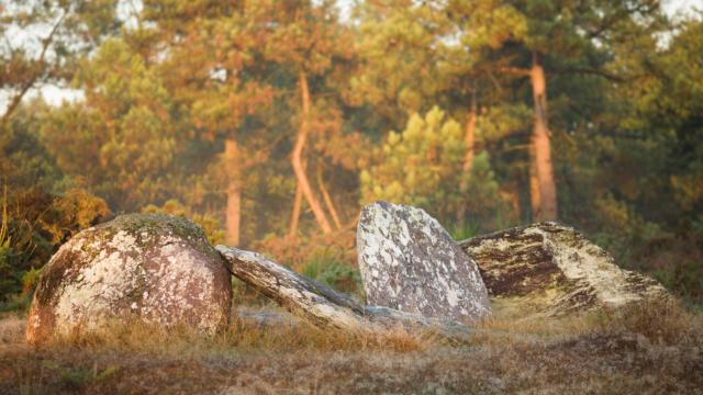 2-montneuf-site-archologique-des-pierres-droites-e-berthier.jpg