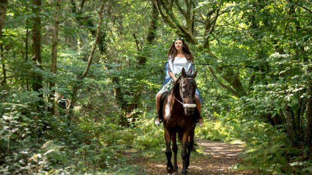 Le Val sans Retour - Forêt de Brocéliande