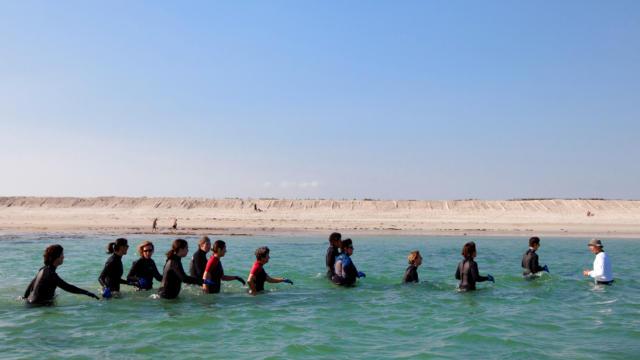 Avec Erwan Faites Vos Premiers Pas Aquatiques 4