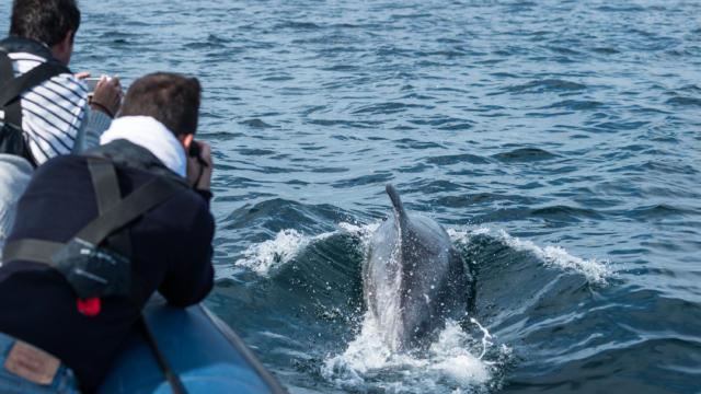explorez-les-beautes-de-l-archipel-de-molene-3.jpg