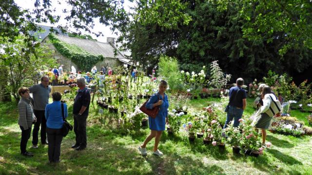 festival-lieux-mouvants-plantes-maryline-raoult.jpg