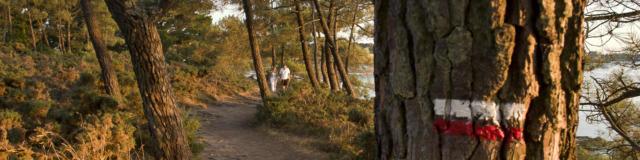 Larmor Baden - Golfe du Morbihan