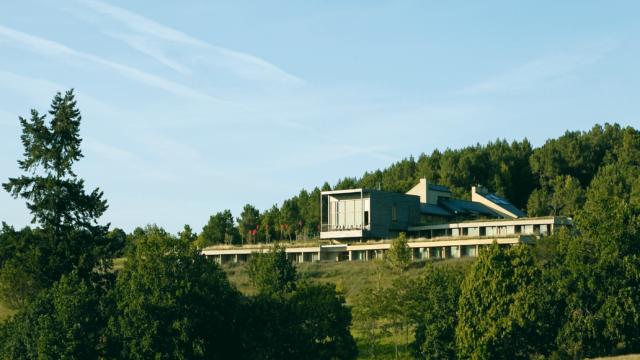 Eco-Hôtel Spa La Grée des Landes - Cournon