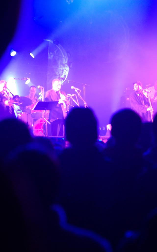 Festival des Trans Musicales - Rennes