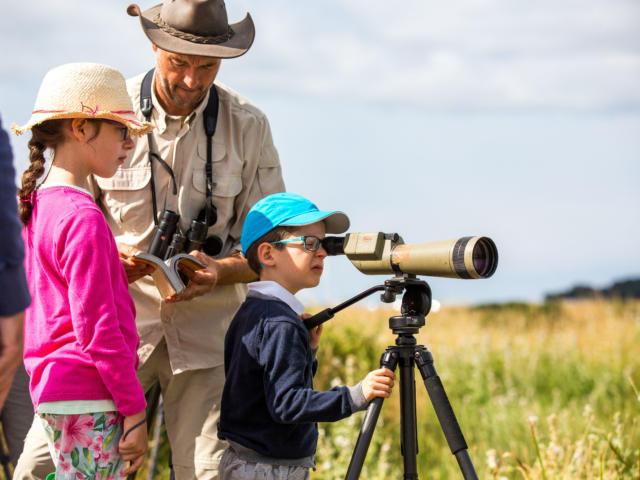 Observez Les Oiseaux Du Golfe Avec David