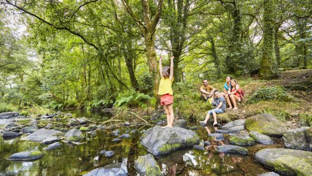 Balade en forêt-Le Faouët