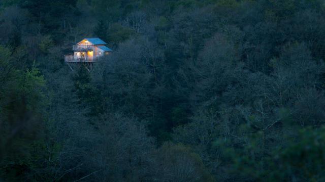 cabane-dans-les-arbres-3-berthier-emmanuel.jpg