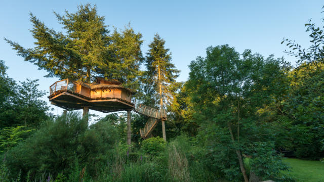 cabane-dans-les-arbres-berthier-emmanuel.jpg