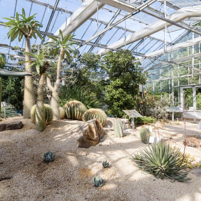 conservatoire-botanique-brest-mathieu-le-gall.jpg