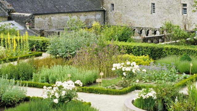 daoulas-jardin-mdicinal-bernard-galeron.jpg