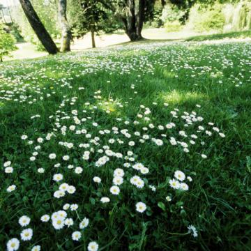 Les Plus Beaux Parcs Et Jardins Tourisme Bretagne