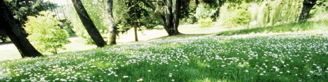 daoulas-jardins-bernard-galeron.jpg