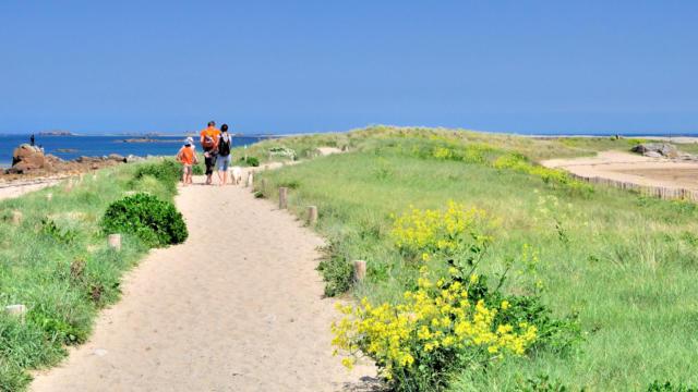 Une famille marche sur le sentier des dunes du sillon de Talbert