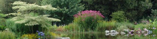 parc-botanique-de-cornouaille-combrit-4.jpg