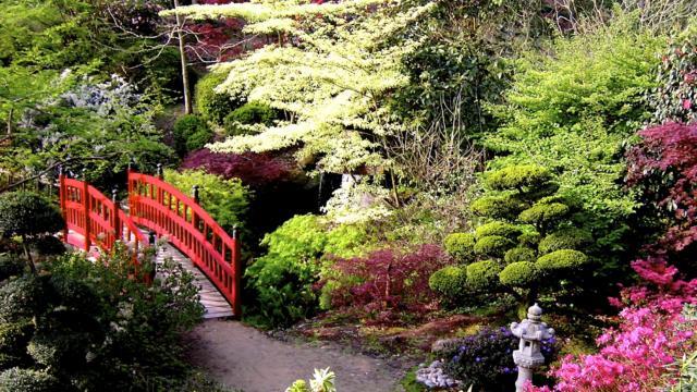 parc-botanique-de-haute-bretagne-le-chatelier.jpg