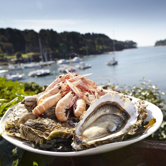 Plat de langoustines et huîtres devant la mer