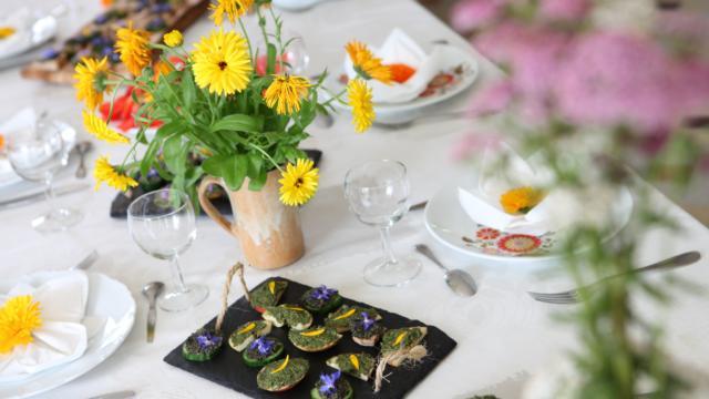 Reconnaitre et cuisiner les plantes sauvages à Bais