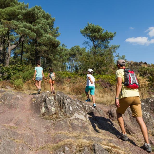 Sentier de randonnée Trémelin - Iffendic (35)