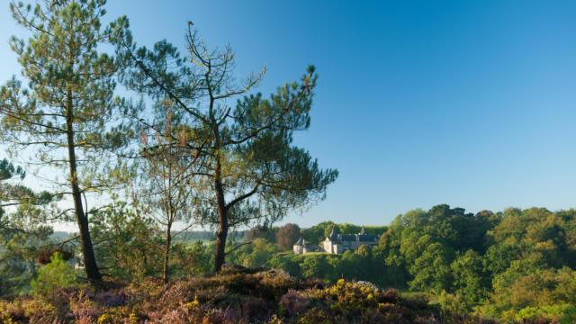 Rochefort en Terre - Landes et château