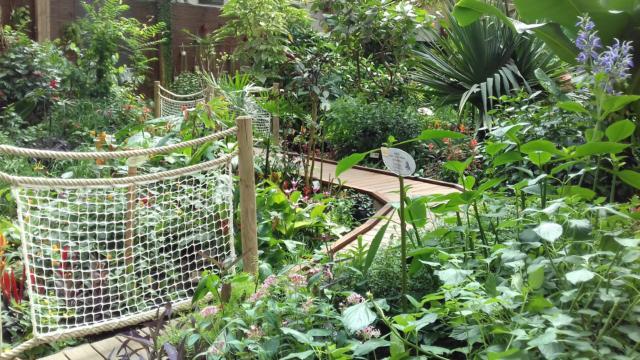 Vannes - le jardin aux papillons vue intérieure