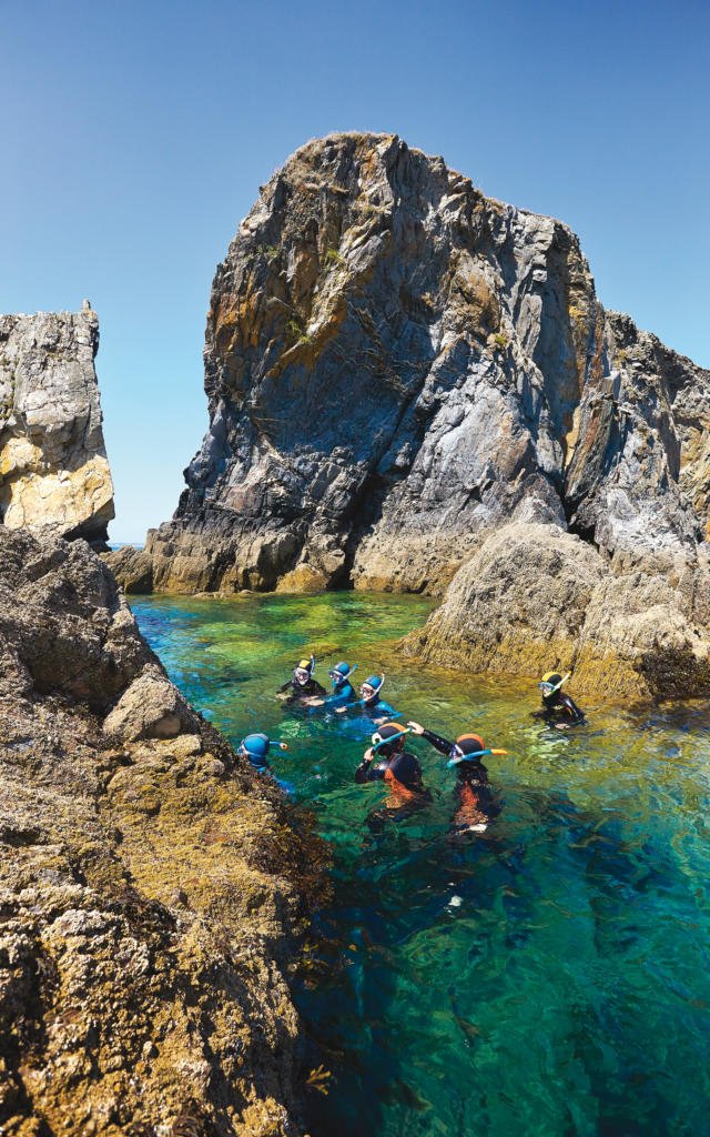 Randonnée palmée - Mer d'Iroise