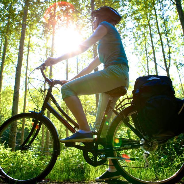 Femme à vélo en forêt