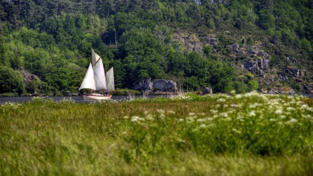 Le Morwenna sur la Vilaine - La Roche-Bernard