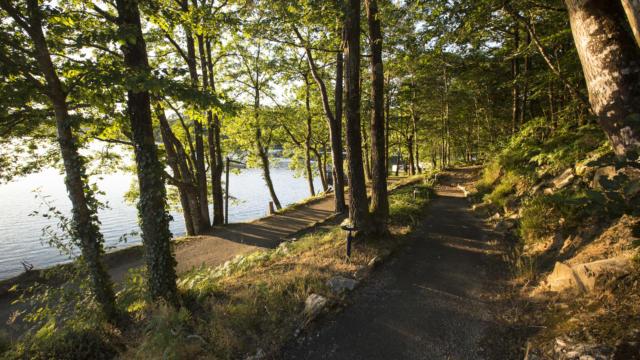 Sur les bords du lac de Guérledan