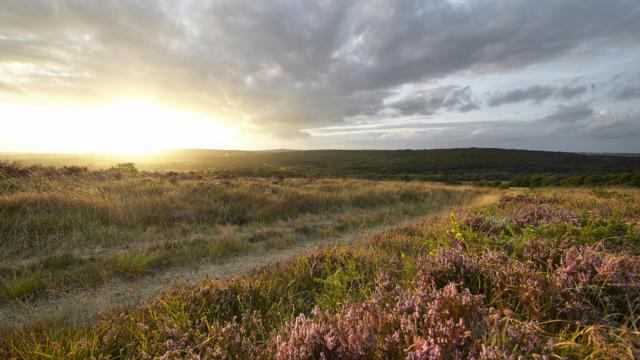 le-pays-du-roi-morvan-vue-panoramique-sur-les-montagnes-noires--alexandre-lamoureux.jpg