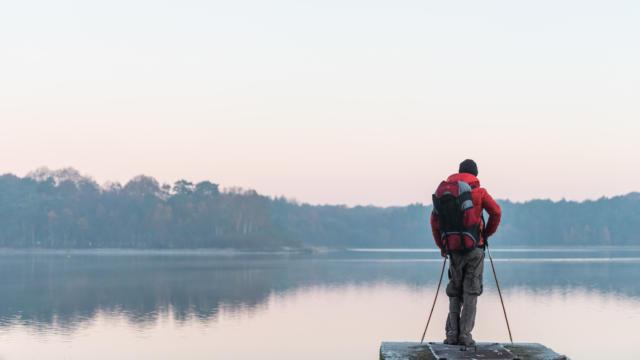 France, Ille et Vilaine (35), Paimpont, randonneur au lever du soleil devant l'etang du Pas-du-Houx dans la foret de Broceliande