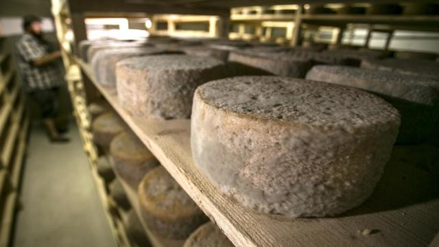 cave-tome-de-rhuys-ferme-fromagere-suscino.jpg