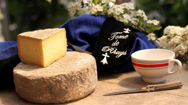 tome-de-rhuys-ferme-fromagere-suscino.jpg