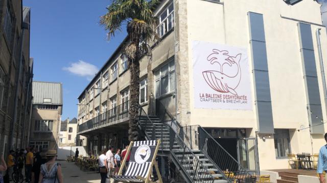 Brasserie La Baleine Déshydratée - Quimper