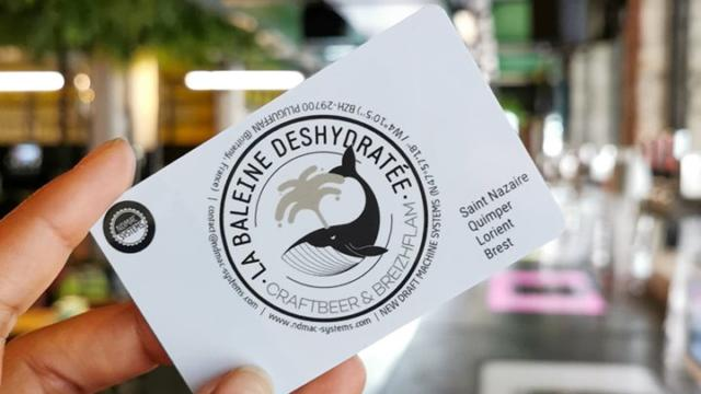 La Baleine Déshydratée à Quimper et Saint-Nazaire