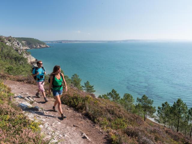 Randonnée le long de la côte de la Presqu'île de Crozon parmi la bruyère et les pins