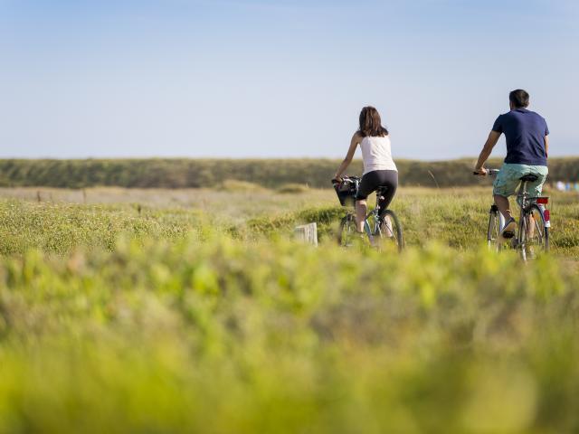 Balade à vélo dans le haut pays bigouden