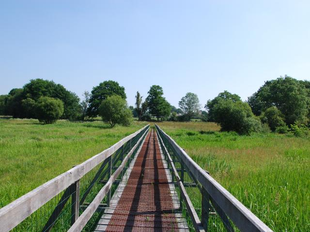 Marais de Gannedel