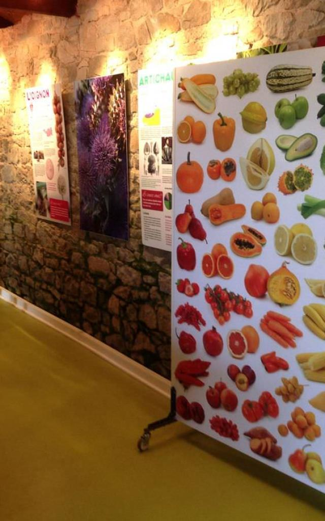 Ferme Kerguelen - Légumes project - Saint-Pol-de-Léon