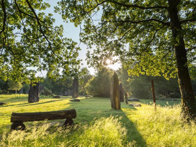 Monteneuf - Menhirs au lever du jour