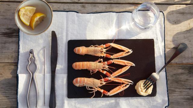 Assiette de langoustines