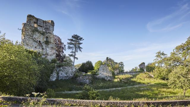 Saint-Aubin-du-Cormier - Les ruines du château