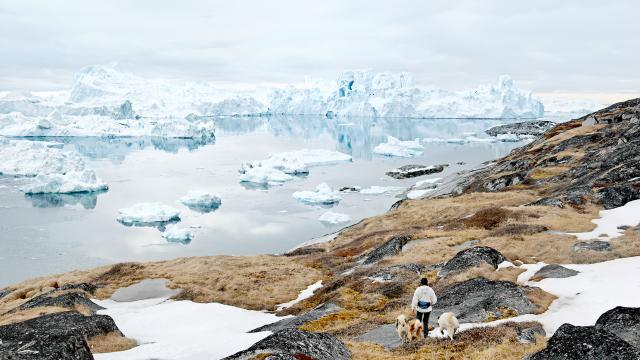 Festival Photo La Gacilly - Entre ciel et glace