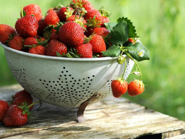 fraises-lucinda-hershberger-unsplash.jpg